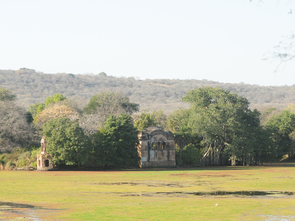 01: An abandoned Indian 11th century royal hunting lodge is the mid-day refuge for....